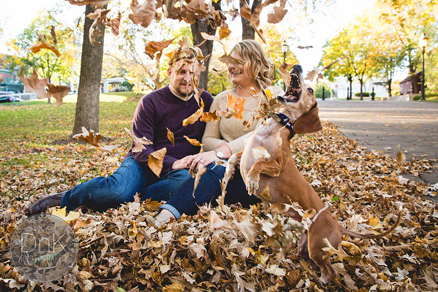 dog-photobombs-engagement-photos-karin-berdal-7