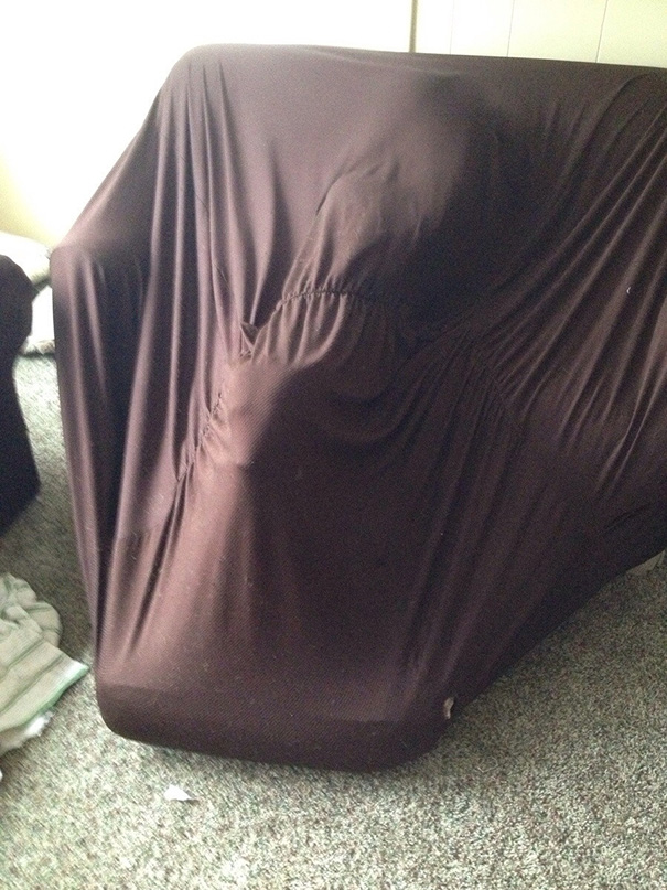 My Dog Got Stuck In The Sofa Cover