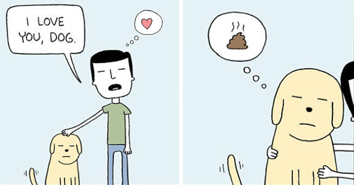 25+ Funny Animal Comics Show Their Human-Like Problems