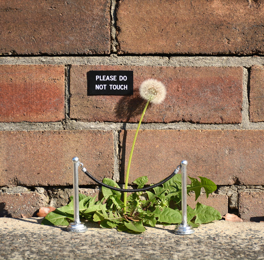 funny-sign-urban-art-michael-penderson-australia-11