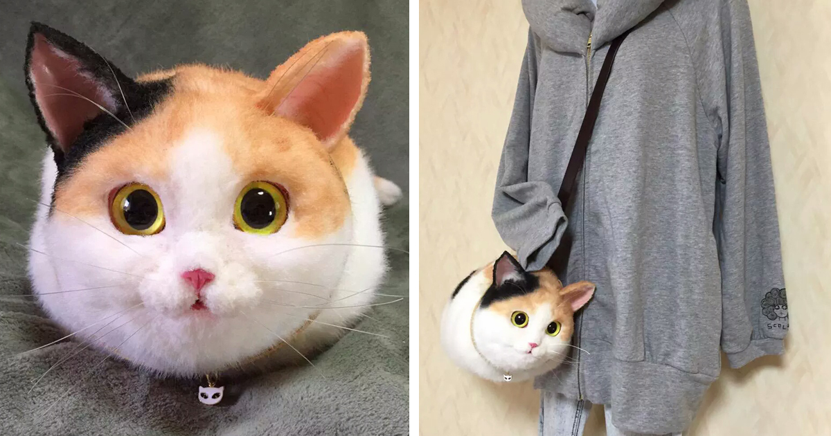 login meow chat