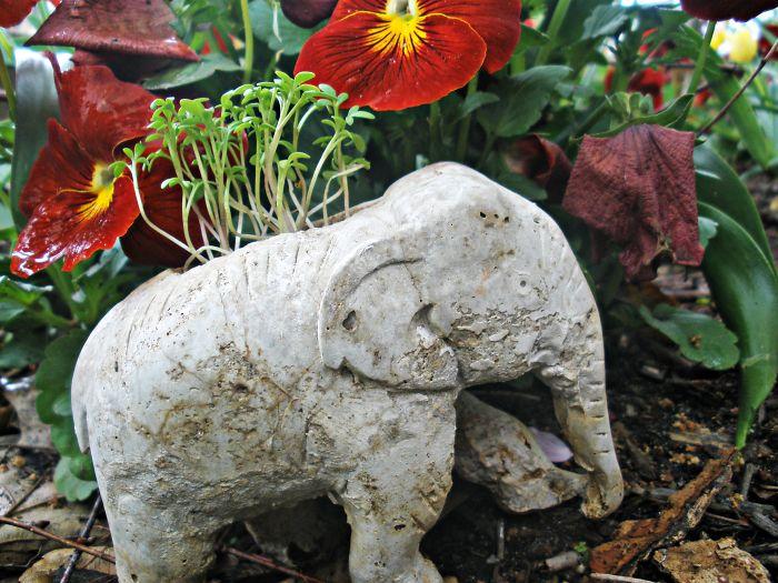 The Adventures Of Hetty The Hypertufa Elephant