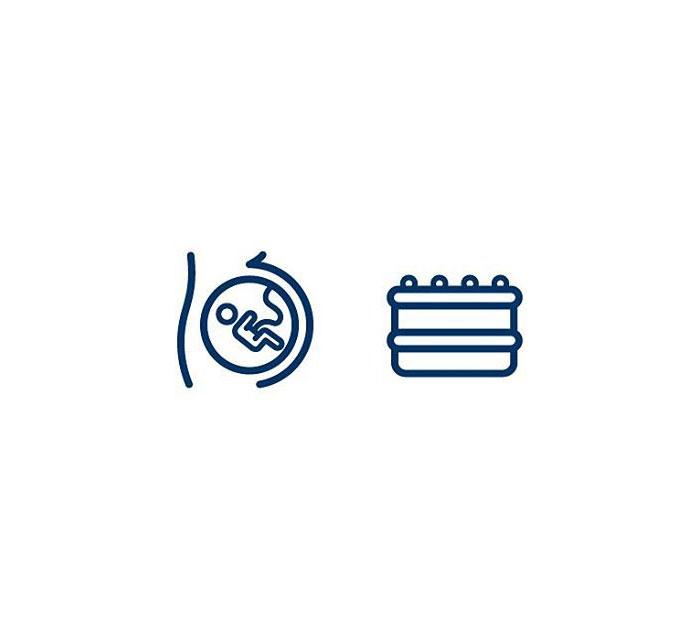 Placenta (Legkaka) = Womb + Cake
