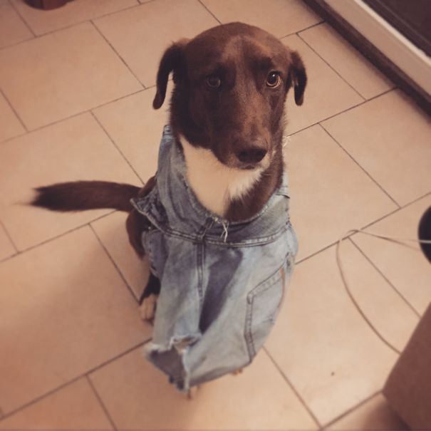 Got His New Style For The Next Fashion Week.