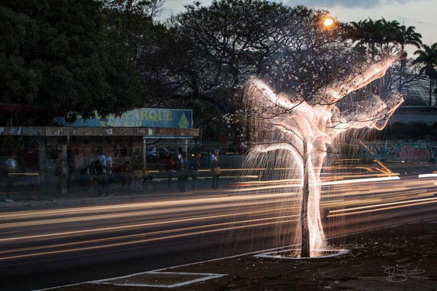 impermanent-sculptures-firework-tree-photography-vitor-schietti-1