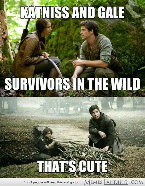 Hunger Games 2.0