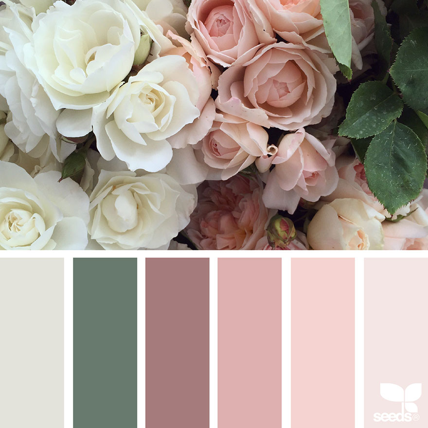 nature-colors-palette-design-seeds-jessica-colaluca-13