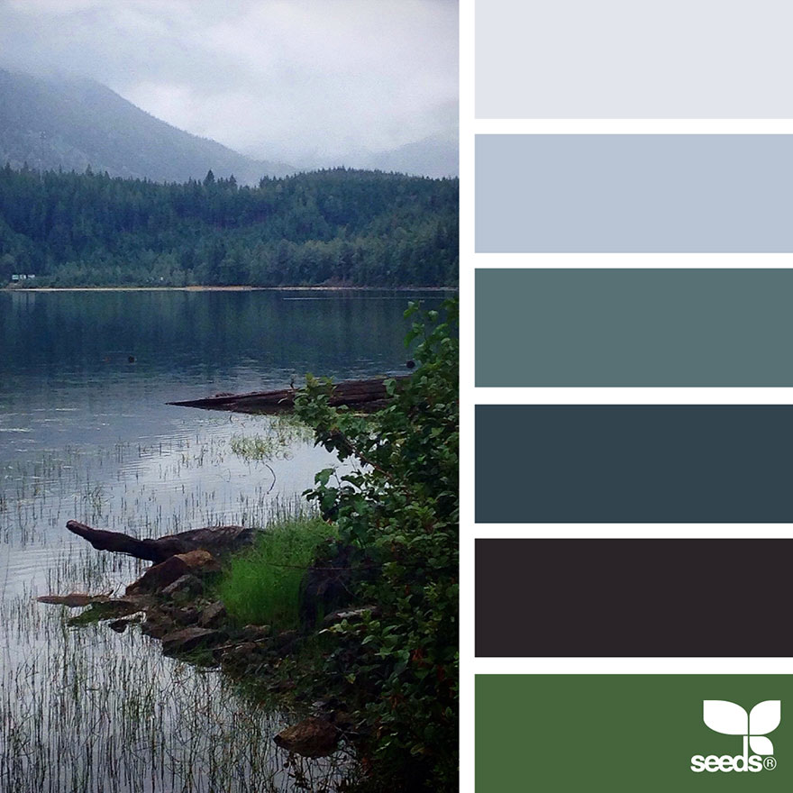 nature seeds palette colors inspired palettes wanderlust colour hues decorators pallet paint forest inspiration aesthetic crafters aka designers light gray