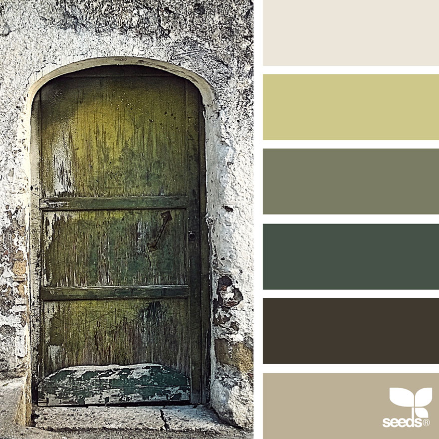 nature-colors-palette-design-seeds-jessica-colaluca-20