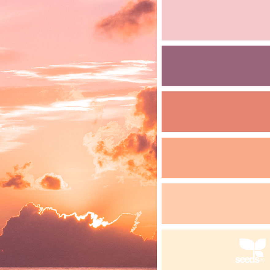 nature inspired color palettes aka design seeds for build styles