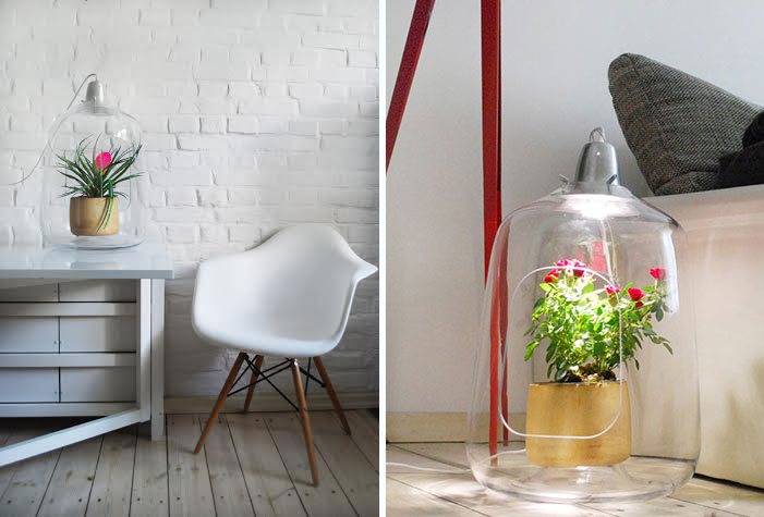 Plant Lamps That Will Give Your Flowers The Sunshine They Miss During Winter