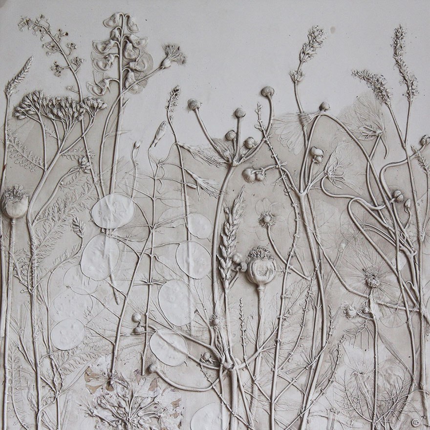 plaster-cast-flower-fossils-rachel-dein-1