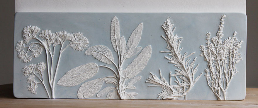 plaster-cast-flower-fossils-rachel-dein-20