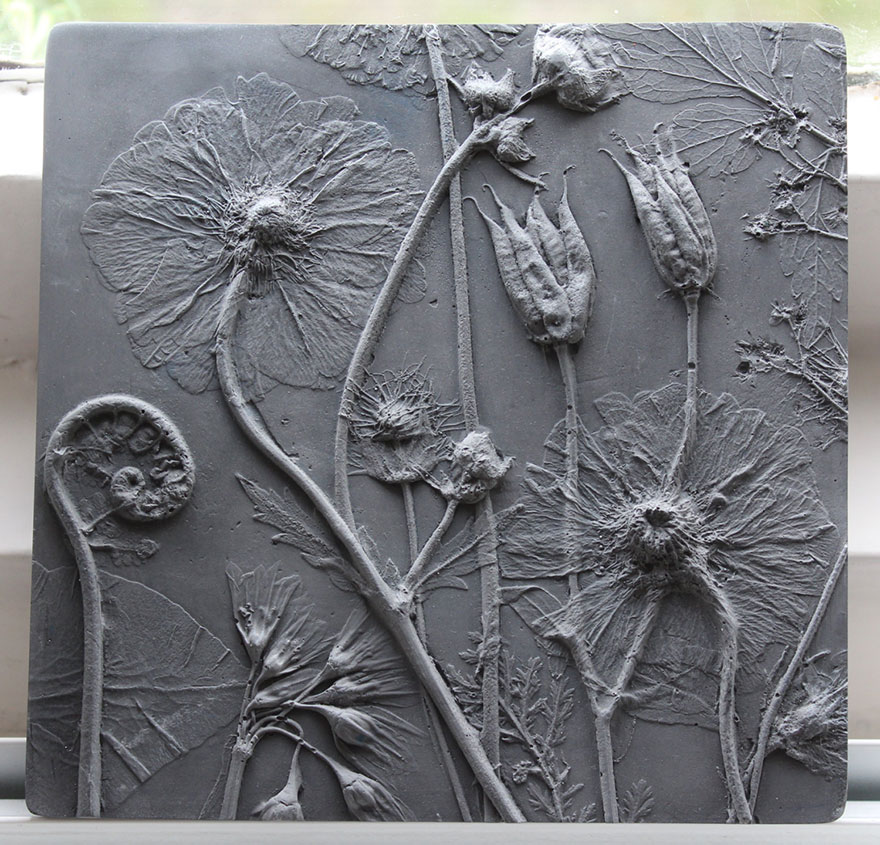artist creates flower fossils by casting plants in plaster. Black Bedroom Furniture Sets. Home Design Ideas