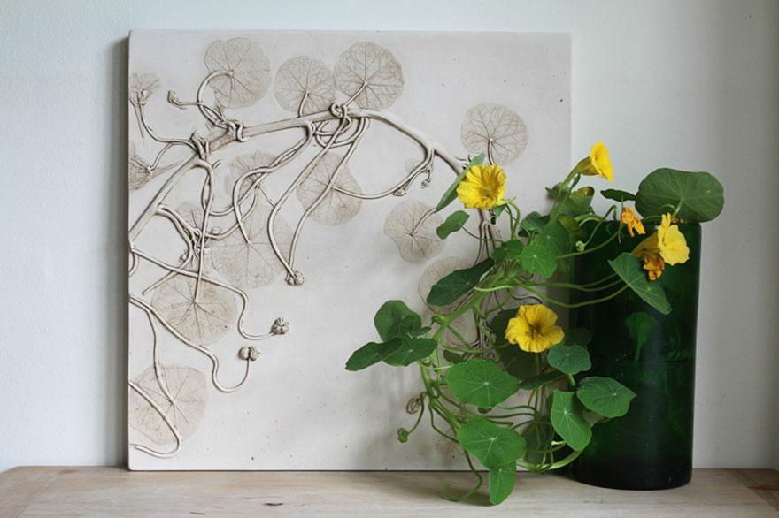 plaster-cast-flower-fossils-rachel-dein-58