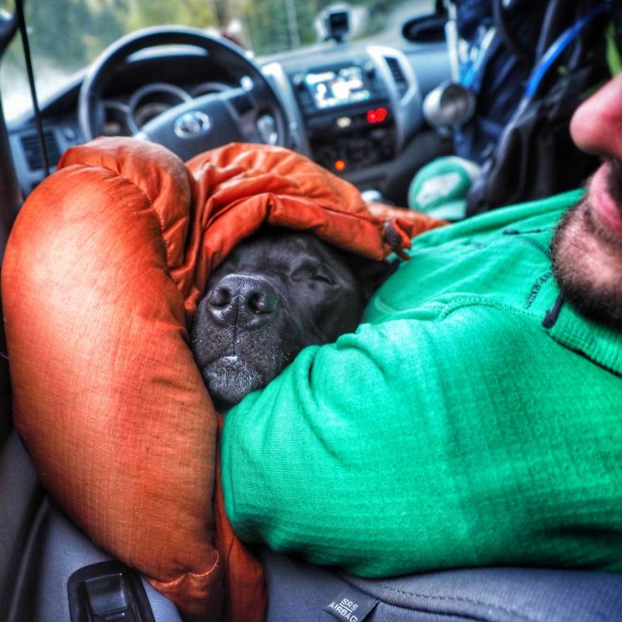 I Live In My Truck With My Dog And Travel Across The Country (Part 2)