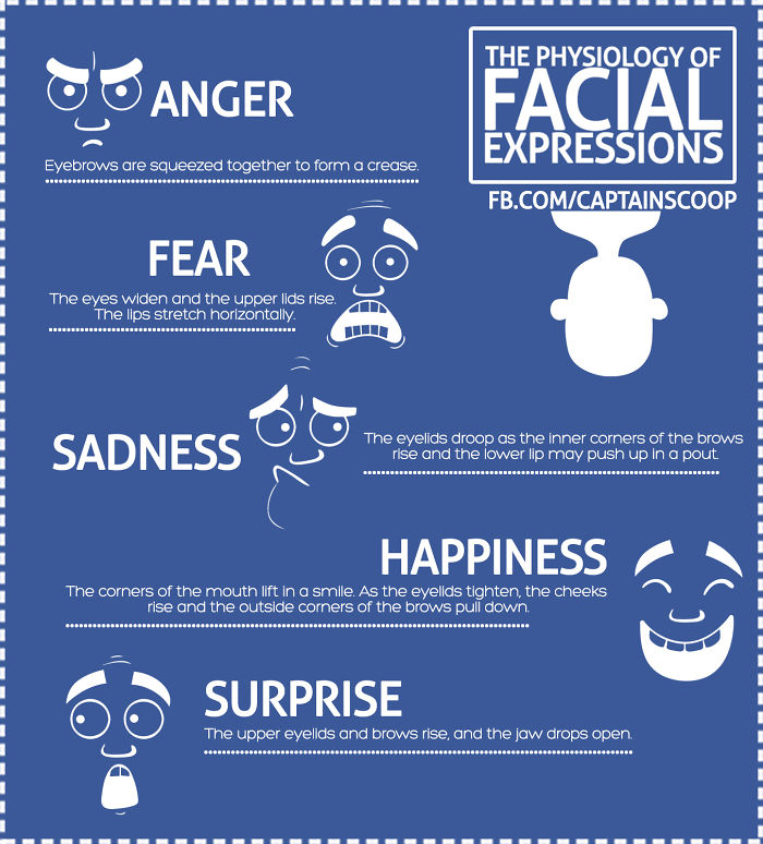 The Physiology Of Facial Expressions
