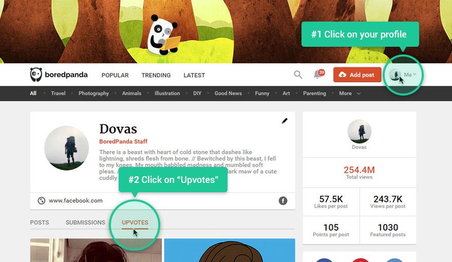 Bored Panda Upvotes Tab Desktop