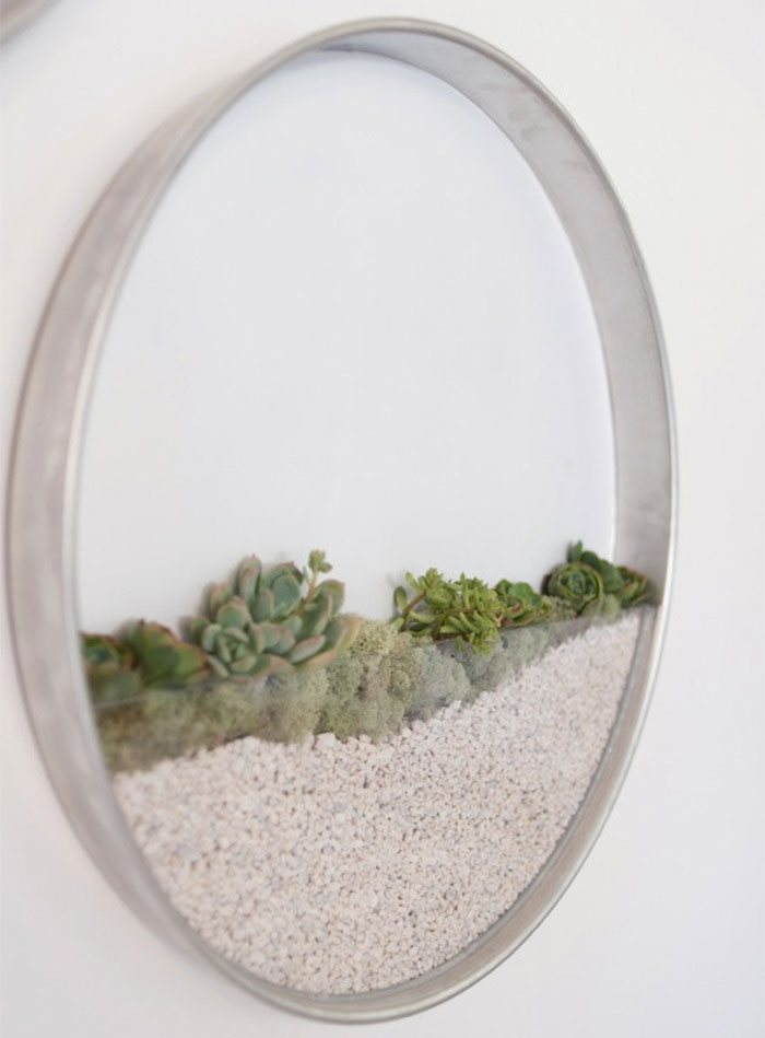 vertical-garden-air-plants-kim-fisher-1