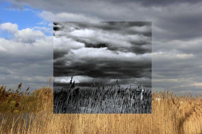 Window Series: I Capture Alternative Realities