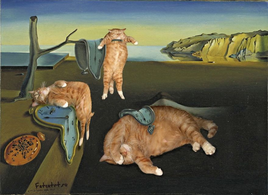 Ginger Cat Zarathustra imitates Dalis The Persistence of Memory