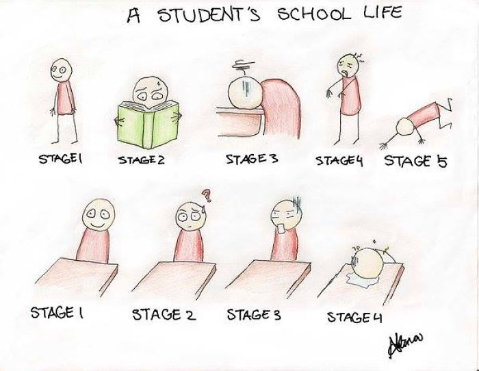 A Student's School Life