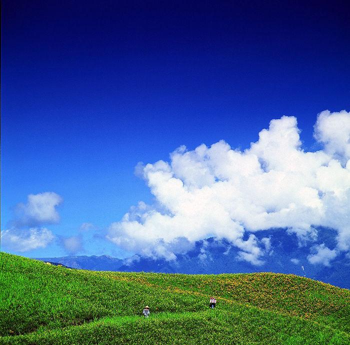 Carpet Of Daylilies Covers Mt. Liushidan In Taiwan