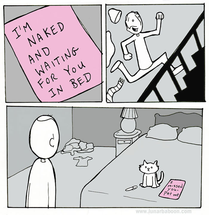 Life With Cats By Lunarbaboon (10+ Comics)