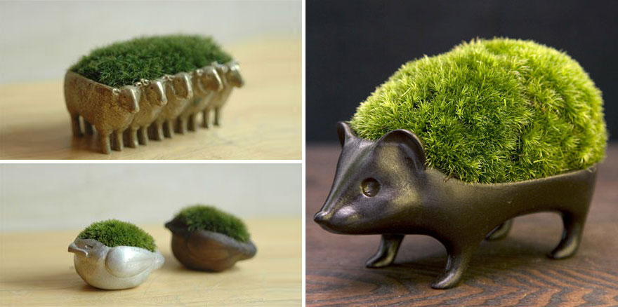 Japanese Moss Planters