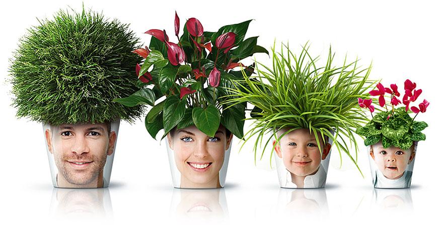 Flower Pot Heads
