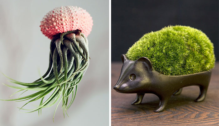 15+ Of The Most Creative Planter Designs Ever