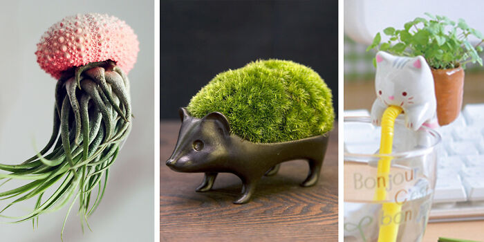 40 Of The Most Creative Planter Designs Ever
