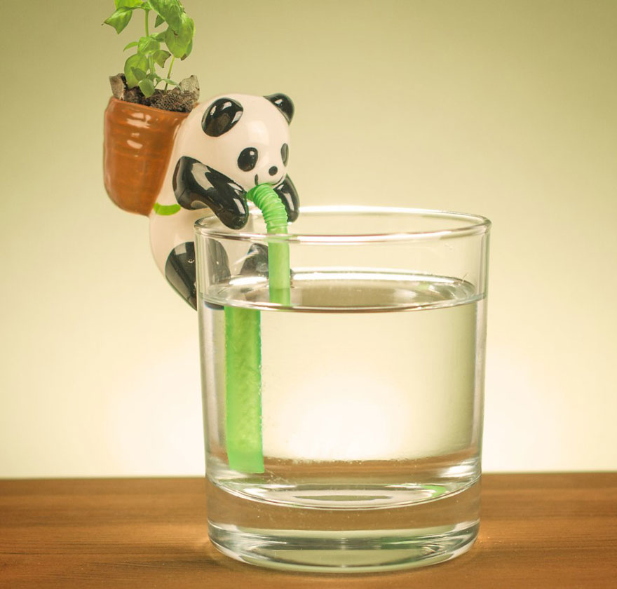 Cute Self Watering Animal Planters Bored Panda