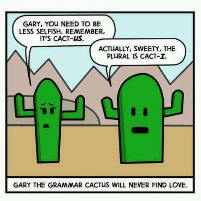 Cacti..