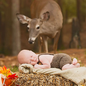 Deer Photobombs Baby's Photoshoot And Turns It Into A Fairytale