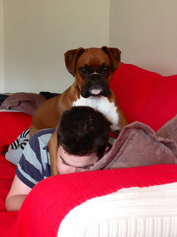 Personal Space With A Boxer? I Don't Think So