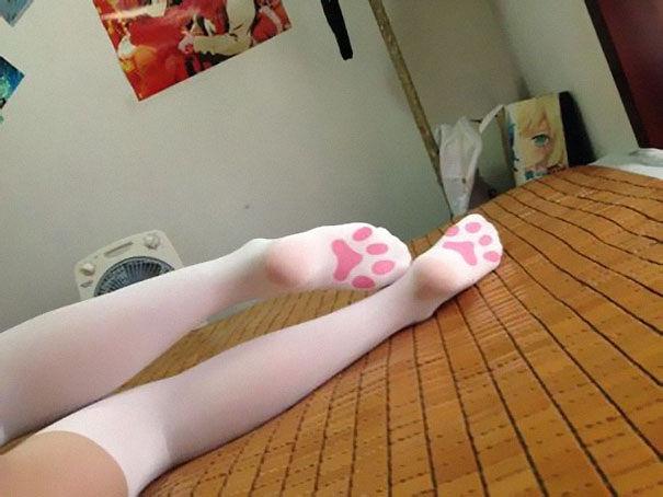 http://static.boredpanda.com/blog/wp-content/uploads/2015/11/gifts-for-cat-lovers-103__605.jpg