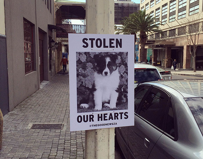 We Spread Good News Around Cape Town Because We're Fed Up With Negative News