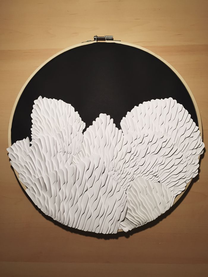 I Hand-cut Paper A Mushroom Gills Paper Sculpture And Individually Glued Each Piece By Hand.
