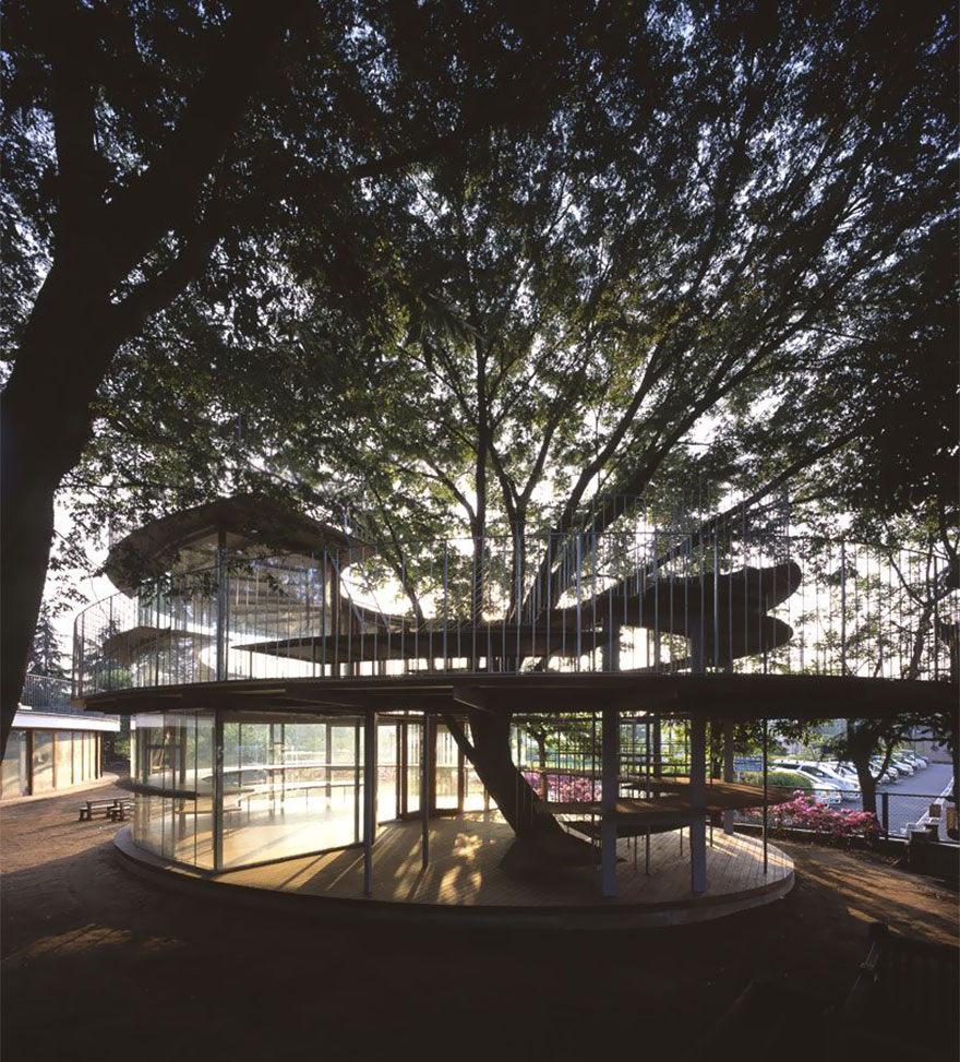 Japanese Kindergarten Built Around A Tree With A Legendary