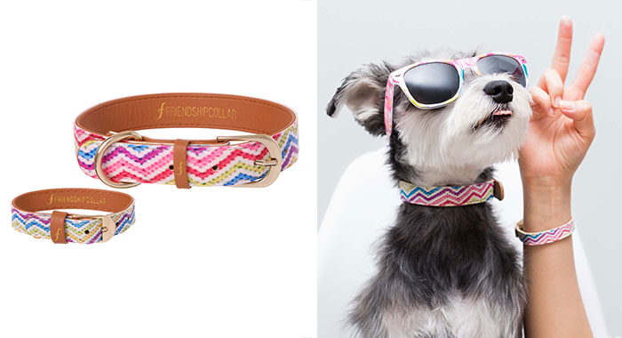 matching-pet-collar-bracelet-friendship-collar-56