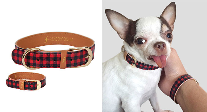 matching-pet-collar-bracelet-friendship-collar-57