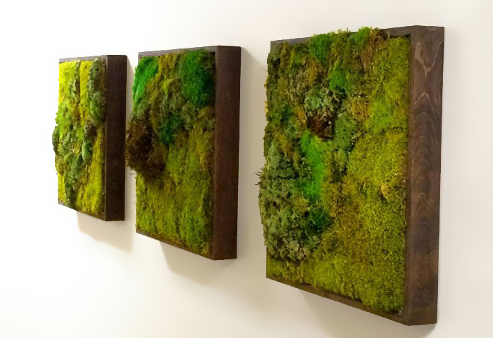 Moss Paintings