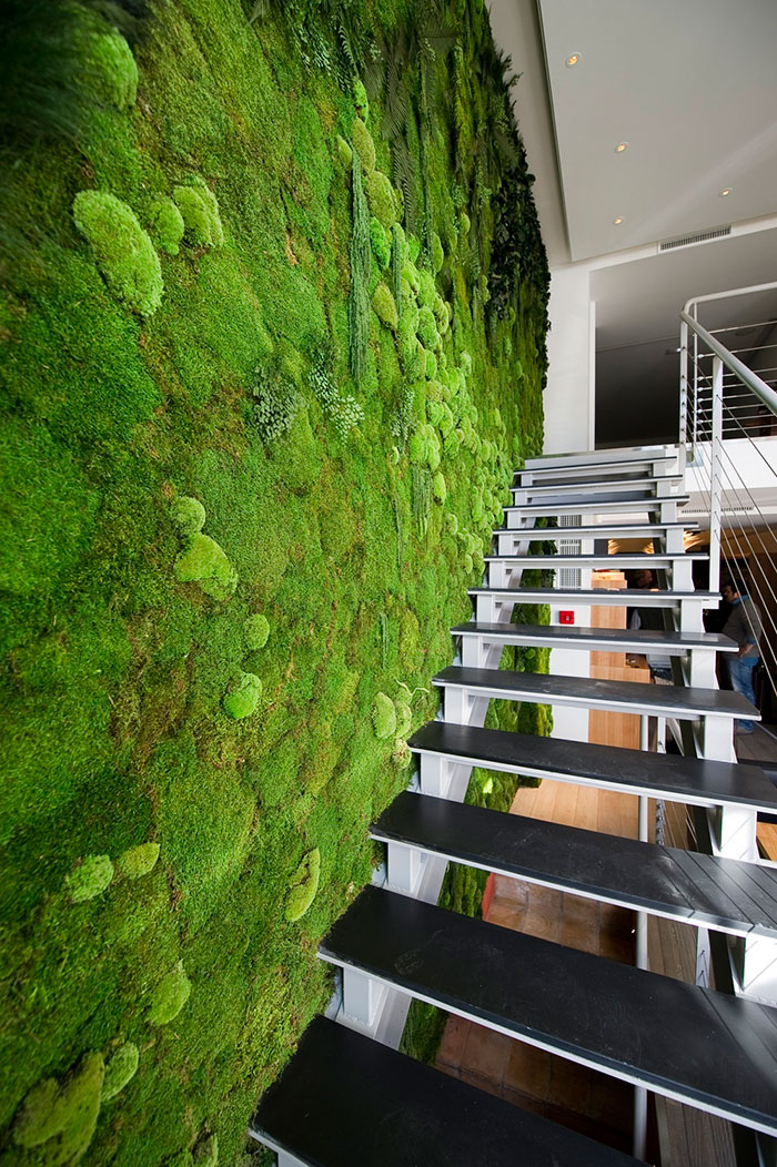 moss walls the interior design trend that turns your home into a forest bored panda. Black Bedroom Furniture Sets. Home Design Ideas