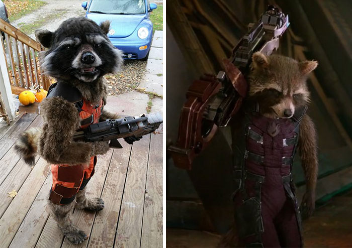 Kid's DIY 'Guardians of the Galaxy' Costume Wins This Year's Halloween
