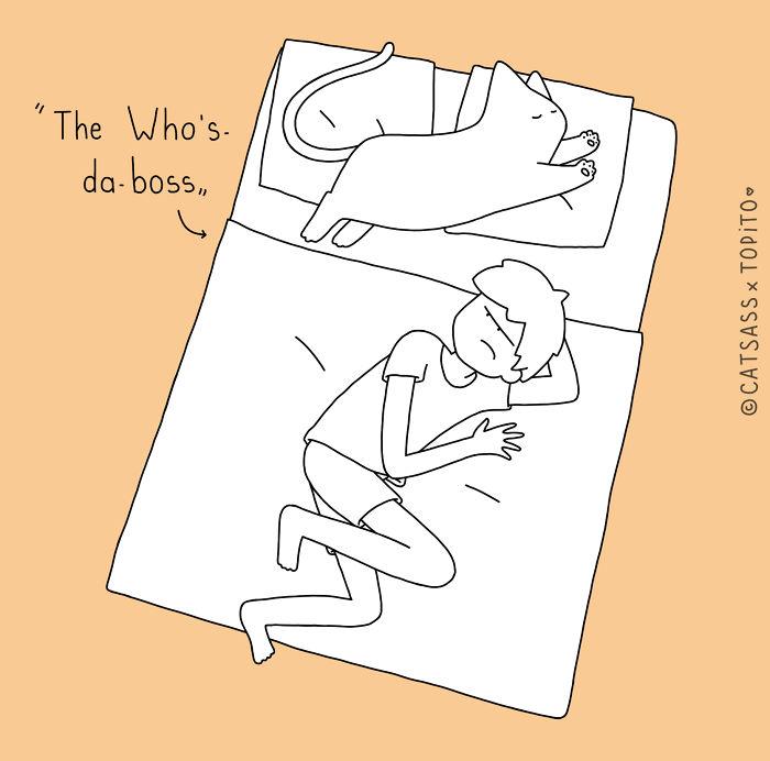 The Who's-da-boss