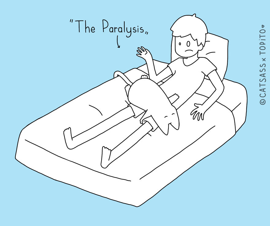 The Paralysis