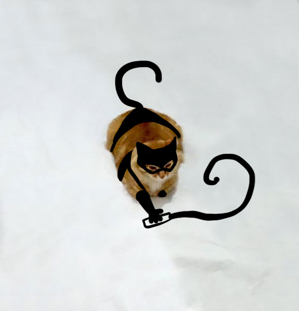Cat Woman (not Sm)