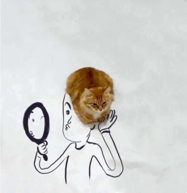 Haircat