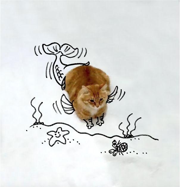 Cat-fish!!